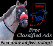 Free Classified Ads...
